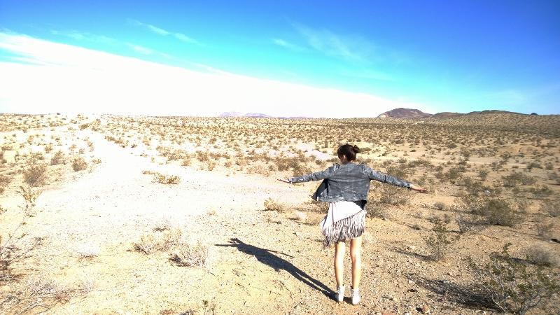 Sunny day in Nevadadesert