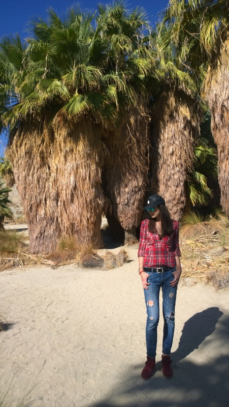 Palm Springs desert – a true adventure