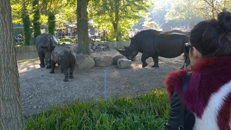 Zoo-licious :)